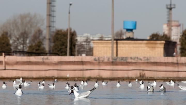 В Октябрьске вскрылись нарушения при строительстве канализационных очистных сооружений