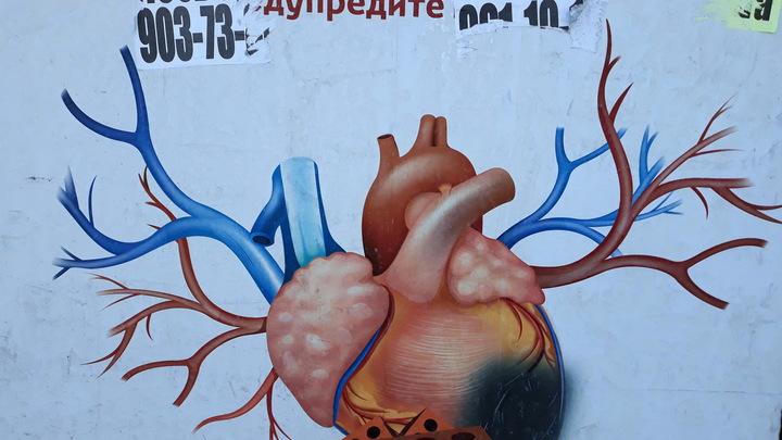 Не только лёгкие: Учёные рассказали, какой жизненно важный орган оказывается под ударом COVID