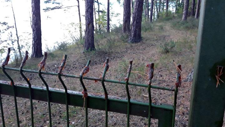 Дачники воткнули забор вокруг пляжа на Тургояке и обмазали его солидолом