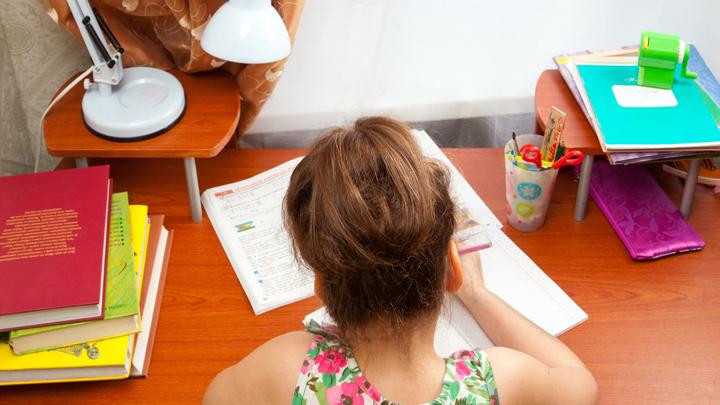 Добровольный дистант: как занимаются дети на домашнем обучении в Челябинске