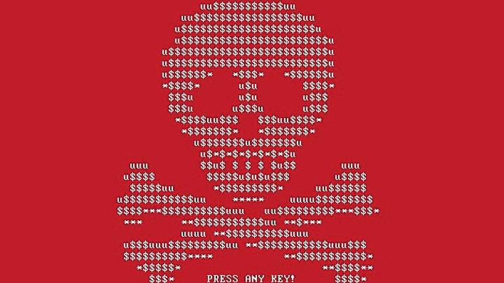 Названа сумма, которую заработали хакеры c помощью вируса Petya