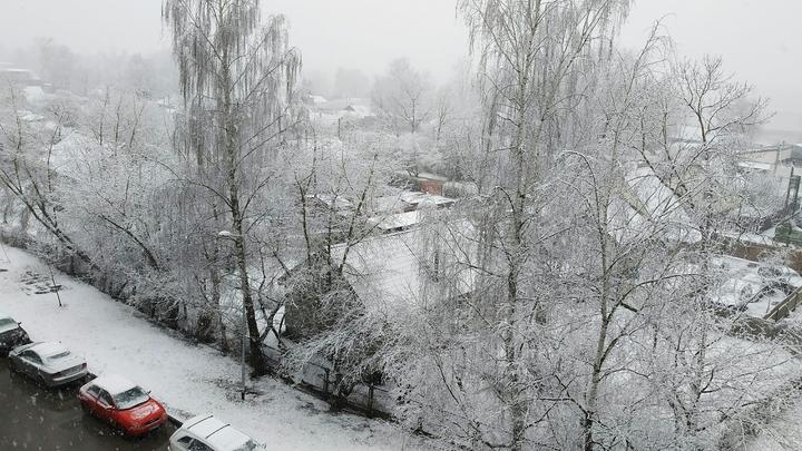Погода 8 ноября: в Челябинск возвращается мокрый снег