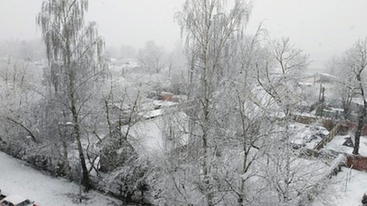Дорожники объяснили, почему в Челябинске клали асфальт во время снегопада