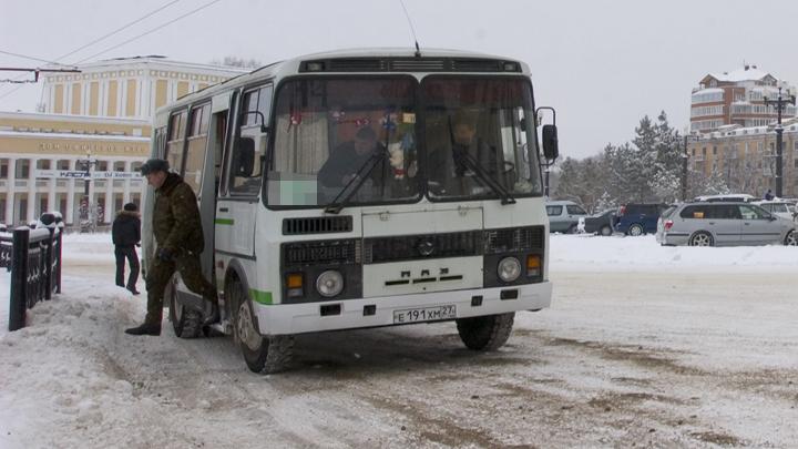 Ездит на маршрутке, ходит в магазин: в Магнитогорске ищут хозяина самостоятельному псу