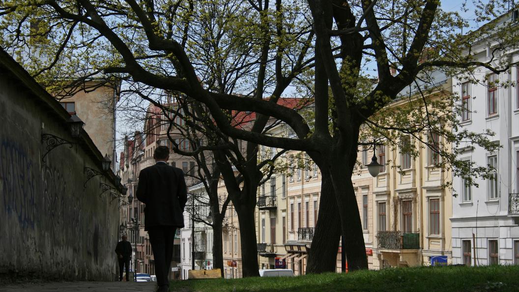СМИ: Во Львовской мэрии СБУ проводит обыски