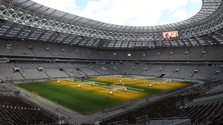 ФБР могут привлечь для охраны футбольного ЧМ-2018 в России