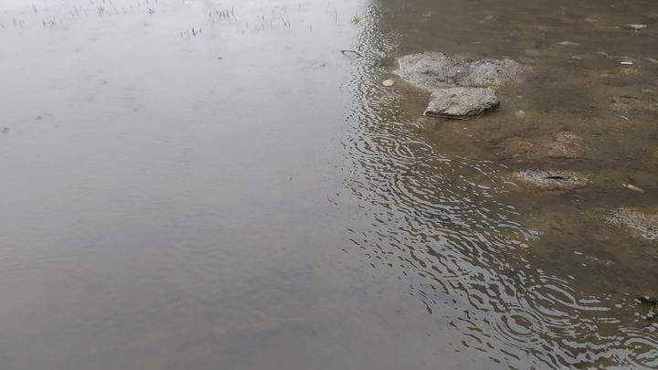 Это жесть, просто жесть!: Видео из затопленного Сочи напомнило фильм-катастрофу
