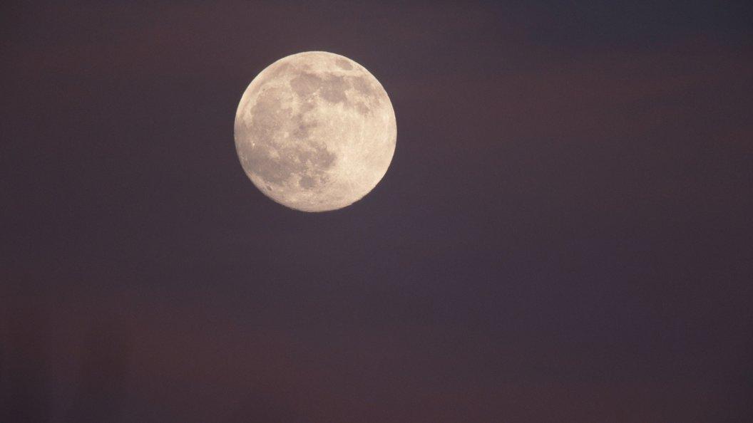 Сумку Армстронга с лунной пылью продали на аукционе за 1,8 млн долларов