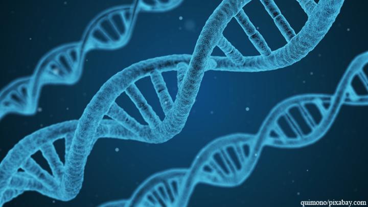 Ученые: Темный геном ДНК будет разгадан через 50 лет