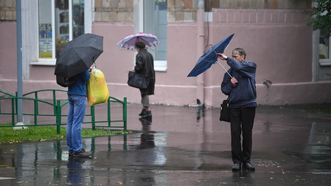 В столице России объявлено штормовое предупреждение из-за ветра
