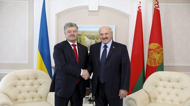 Не удержался: Порошенко нарушил протокол встречи с Лукашенко, едва услышав слово «Донбасс»