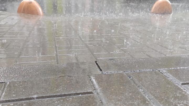 Погода в Ростове-на-Дону 2 сентября 2021: дождливо