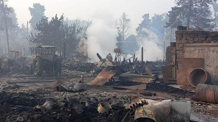Губернатор Алексей Текслер лично проверит обстановку в пострадавших от лесного пожара поселках