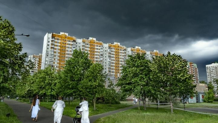 Ливни с грозами ожидаются в Подмосковье днём 30 июля