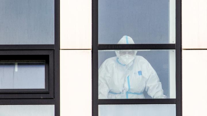 Ни одного случая коронавируса за сутки не выявили в 9 округах Подмосковья