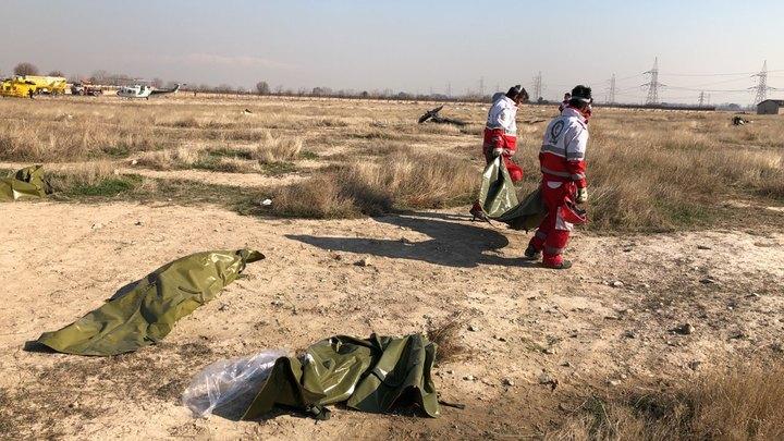 Двигатели так быстро не горят: заслуженный пилот о крушении украинского Боинга в Иране