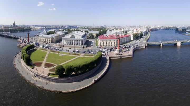 Бюрократические Заросли: Проект возведения дороги у Невы споткнулся о суд, активисты требуют парк