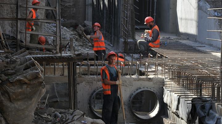 Вход на рынок воспрещен: В России определили сферы, в которых могут работать мигранты