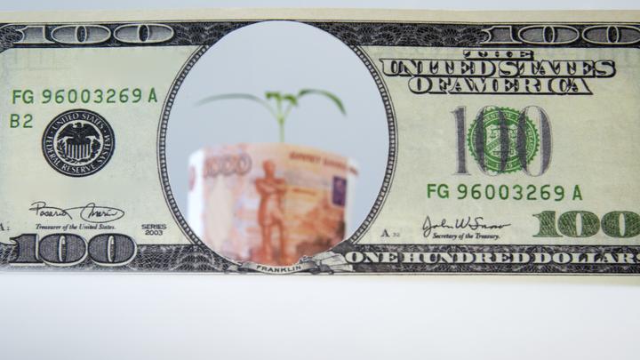 Цифровизация во всём: Коснётся даже рубля