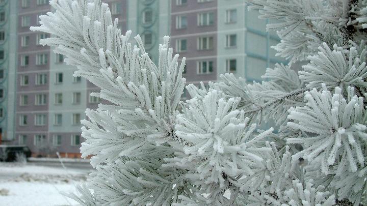 Владивосток окатило ледяным дождём: Десятки искорёженных машин и каток на тротуарах