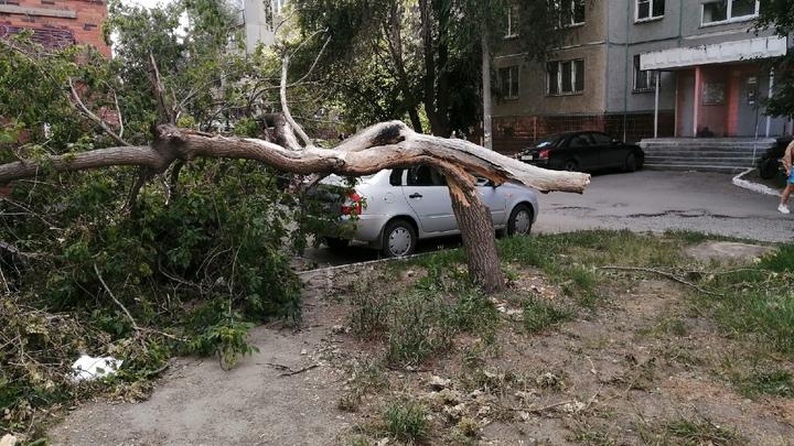 Жителей Челябинской области предупреждают о граде и сильном ветре