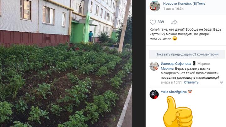 Жители Копейска устроили картофельное поле прямо во дворе многоэтажки