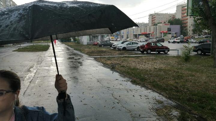 Выходные в Челябинске будут дождливыми