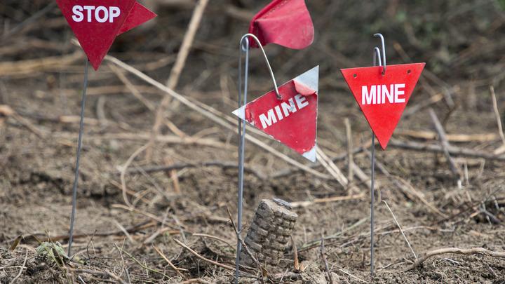 В России создается умная мина, безопасная для мирных людей