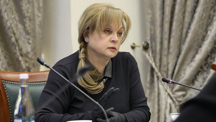 Выборы-2021 по удалёнке: Памфилова сообщила о ноу-хау для избирателей. Но пока не везде