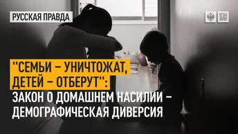 Семьи – уничтожат, детей – отберут: Закон о домашнем насилии – демографическая диверсия