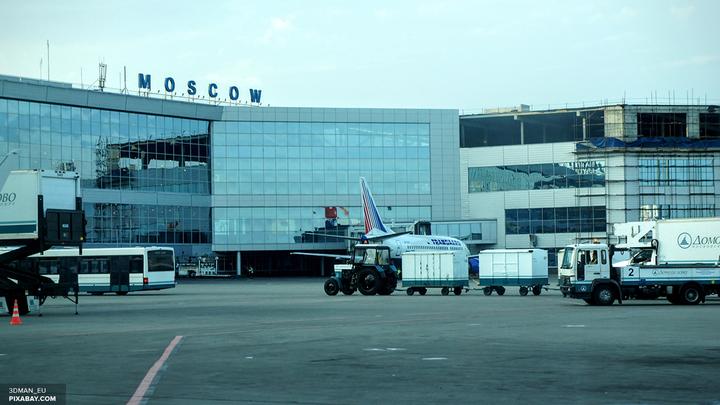 В аэропортах Москвы отменили более 10 рейсов из-за непогоды