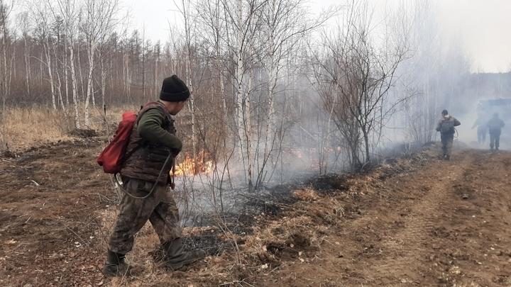 Батарейную сопку тушат, но рядом с Читой выявлен новый лесной пожар