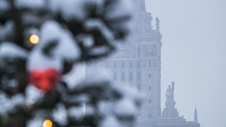 России предложили новогодний локдаун: Продлить каникулы на 2 недели с сохранением зарплаты