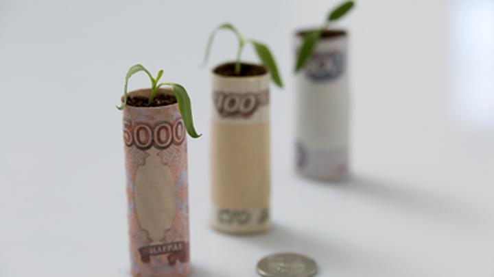 Две трети граждан России одобрили повышение налога для богатых