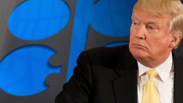 Пять глупостей Дональда Трампа