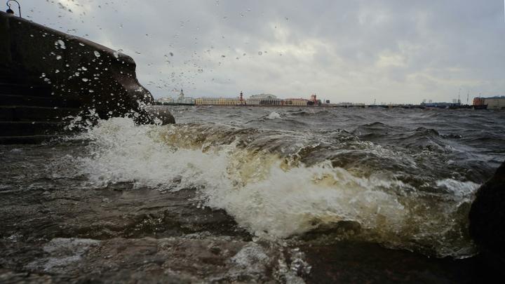 В Санкт-Петербурге наводнение: Монрепо затопило, Васильевскому острову приготовиться