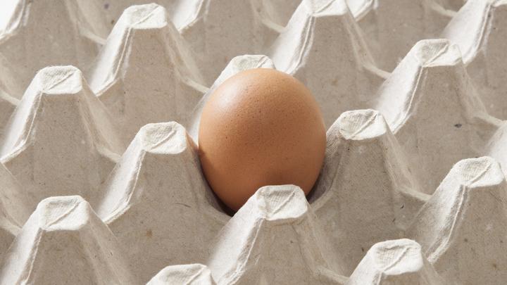 Сбылось раньше срока: В России начали продавать яйца поштучно