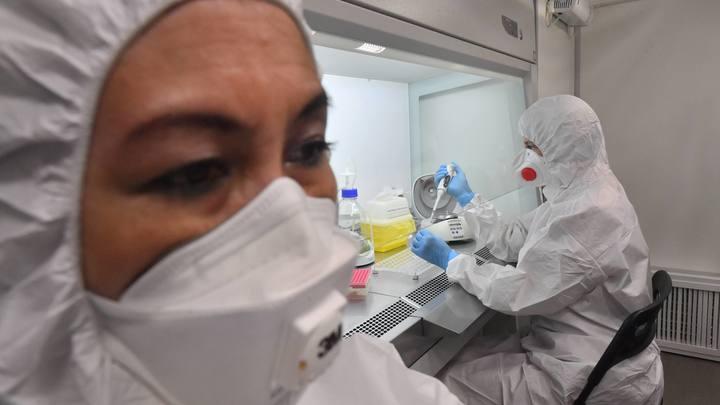 Коронавирус во Владимирской области, новости на 19 октября: 82 заболевших и начало каникул