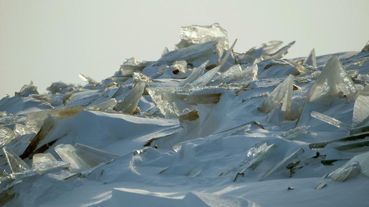 Всё было заморожено, а сейчас тает: Учёный предупредил о древних вирусах в России
