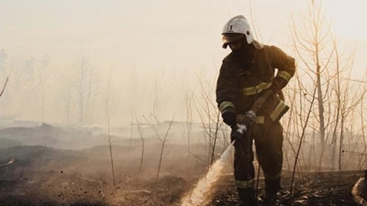 Пожар на газопроводе в Башкирии: Стена огня вынудила перекрыть трассу - видео