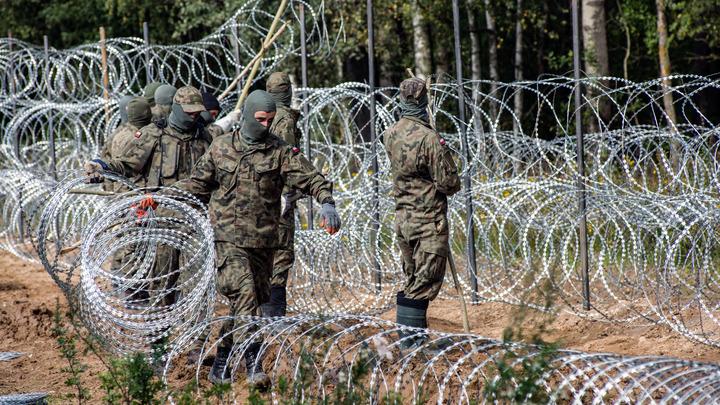 Пограничники задержали россиянина, который помогал нелегалам перейти из Беларуси в Польшу