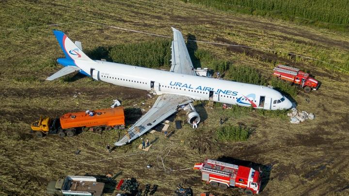 Разве самолёт заслуживает такого?: А321 из чуда на кукурузном поле просят спасти от страшной участи