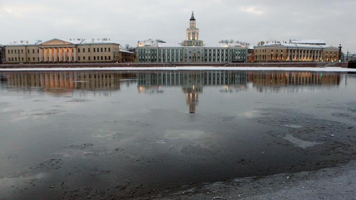 Резкое потепление и обильные осадки: МЧС просит петербуржцев отложить поездки