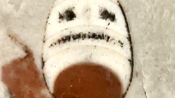 В петербургском метро палеонтологи нашли необычную древность в виде рожицы