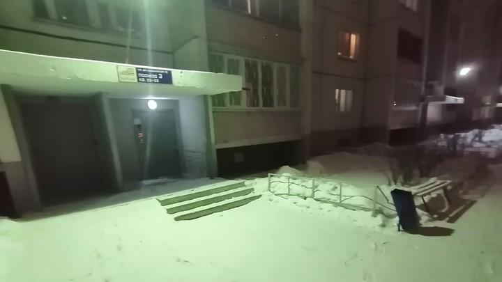 Пес, оставленный на морозе в Челябинске, простил свою хозяйку