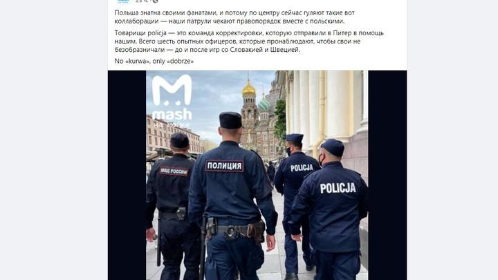 В Санкт-Петербург прибывает иностранная полиция