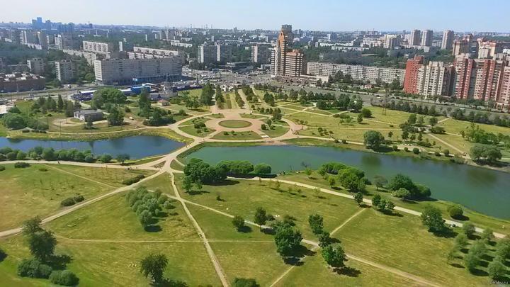 Жители Санкт-Петербурга протестуют против вырубки Парка Интернационалистов ради дороги