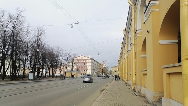 На страже беспорядка. Велосипедистка врезалась в открытую дверь полицейского авто в Петербурге