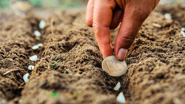 Денег нет, держитесь за огород: Как чиновники борются с бедностью