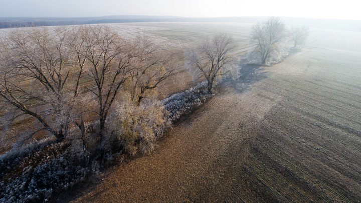 Во Владимире сегодня ожидается переохлажденный туман